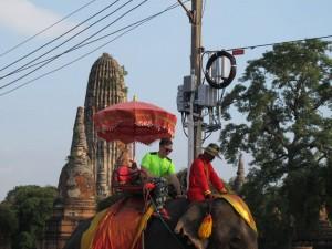 Elephantenreiten in den Ruinen