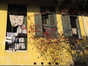 Fenster in Hanoi