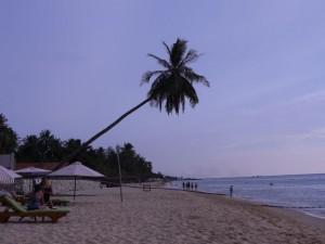 An unserem Strandabschnitt