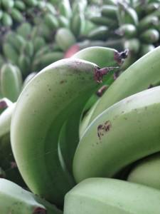 Bananen bereit zum Abtransport