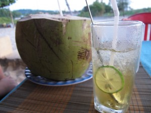 Kokusnuss und Inas neues Lieblingsgetränk