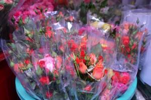 Sister-Roses