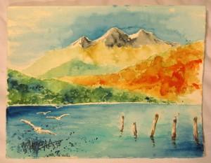 Möven am Lake Te Anau
