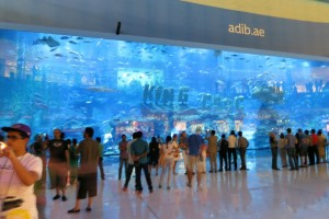 Aquarium in der Dubai Maill