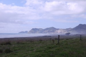 Landschaft am East Cape