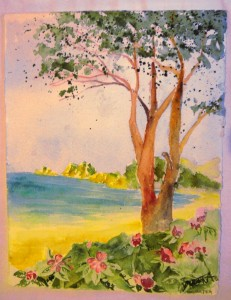 gemalt - Tokomaru Bay